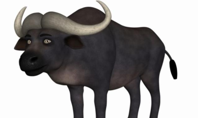 Bufale in rete: ecco i consigli su come scoprirle